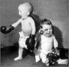 Toddler boxers